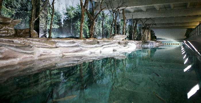 O zoológico de Belo Horizonte (MG) inaugura aquário com espécies do Rio São Francisco