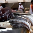 Arte & Lazer - Banca de pescados da grande feira paraense - Foto: Julia Rettmann/AE