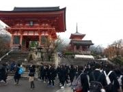 Japão, colorido e delirante o ano todo
