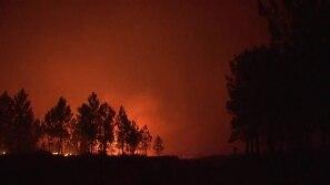 Incendiários presos em Portugal