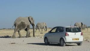 De carro, fomos da África do Sul à Namíbia em clima de 'hakuna matata'