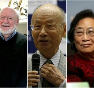 Mary Schwalm/AP, Issei Kato/Reuters, e Jin Liwang/Xinhua/AP
