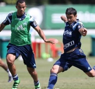 Cesar Greco|Agência Palmeiras