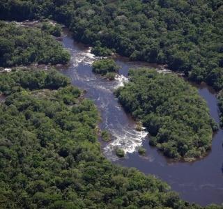 Usinas propõem inundar 1.085 km2 da Amazônia