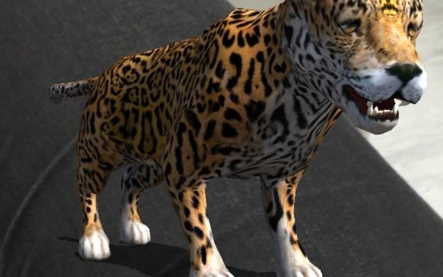 Assim como no Pokémon Go, no BioExplorer os animais da fauna brasileira aparecem no mundo real.