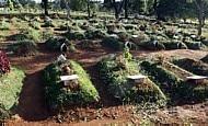 O maior cemitério da América do Sul