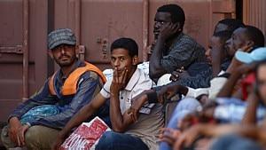 Darrin Zammit/Reuters