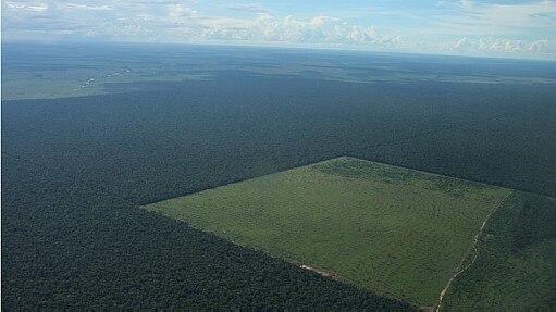 Área desmatada para plantio de soja em Mato Grosso - Rhett Butler