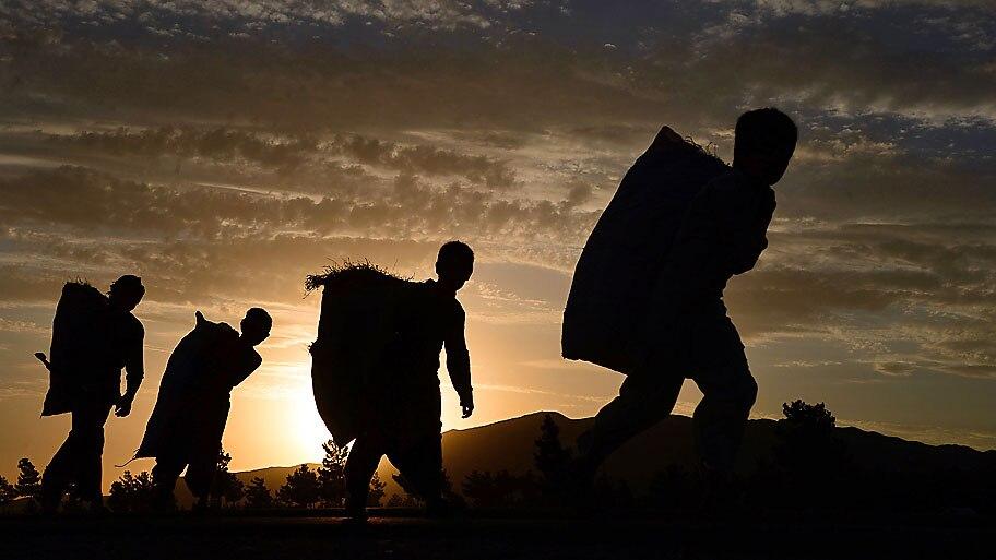 Aref Karimi/AFP   - Jovens afegãos carregam sacos de lenha nos arredores de Herat. Foto: Aref Karimi/AFP