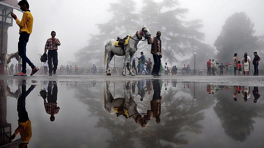 - Indiano com um cavalo passa por uma rua alagada, na cidade montanhosa de Shimla. Foto: AFP
