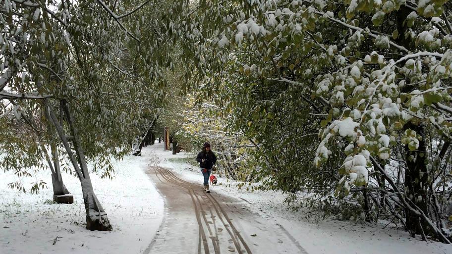 - A primeira neve do outono caiu hoje em Moscou, Rússia . Foto: Irina Samokhvalova/AP