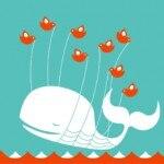 baleia-twitter