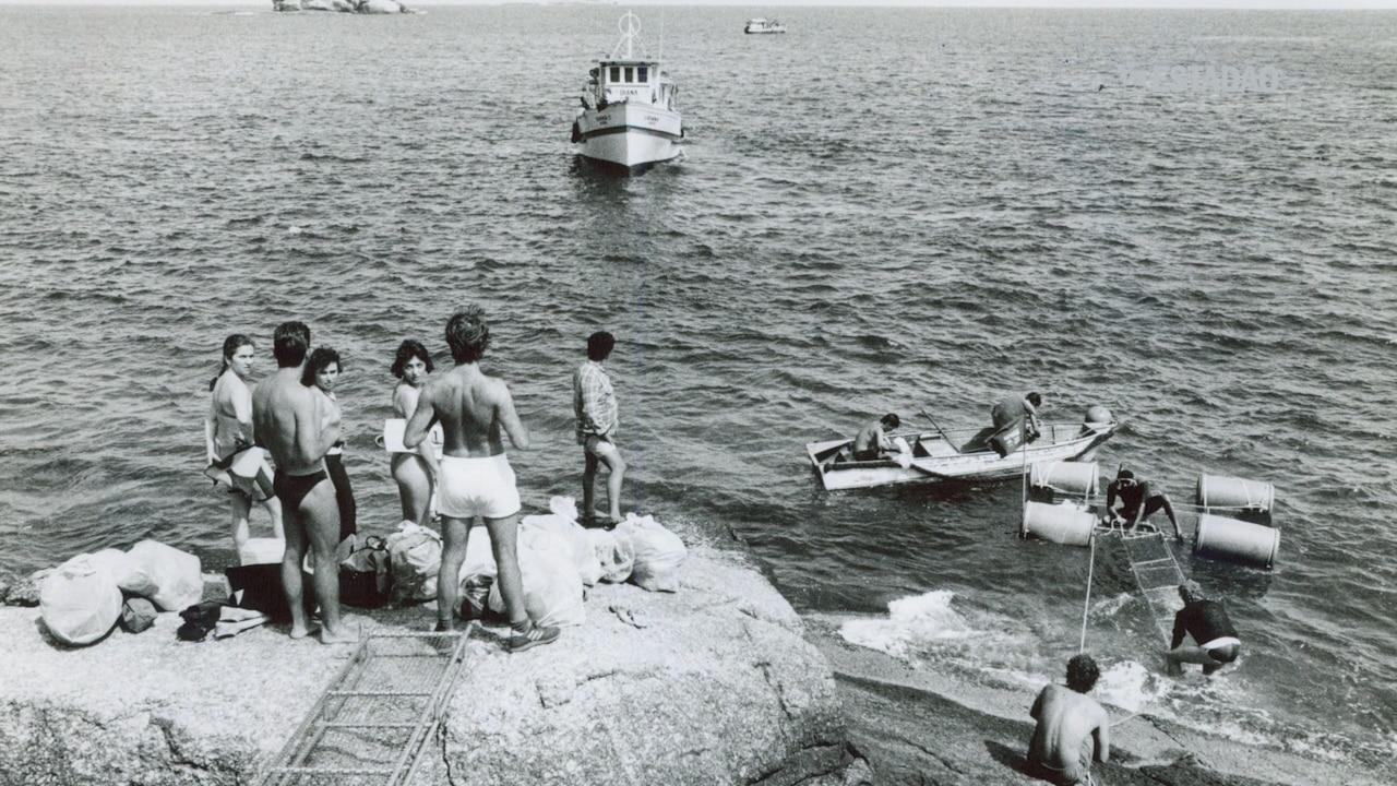 Alcatrazes: Refúgio das bombas