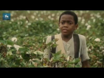 """Assista ao trailer de """"O Mordomo da Casa Branca"""""""