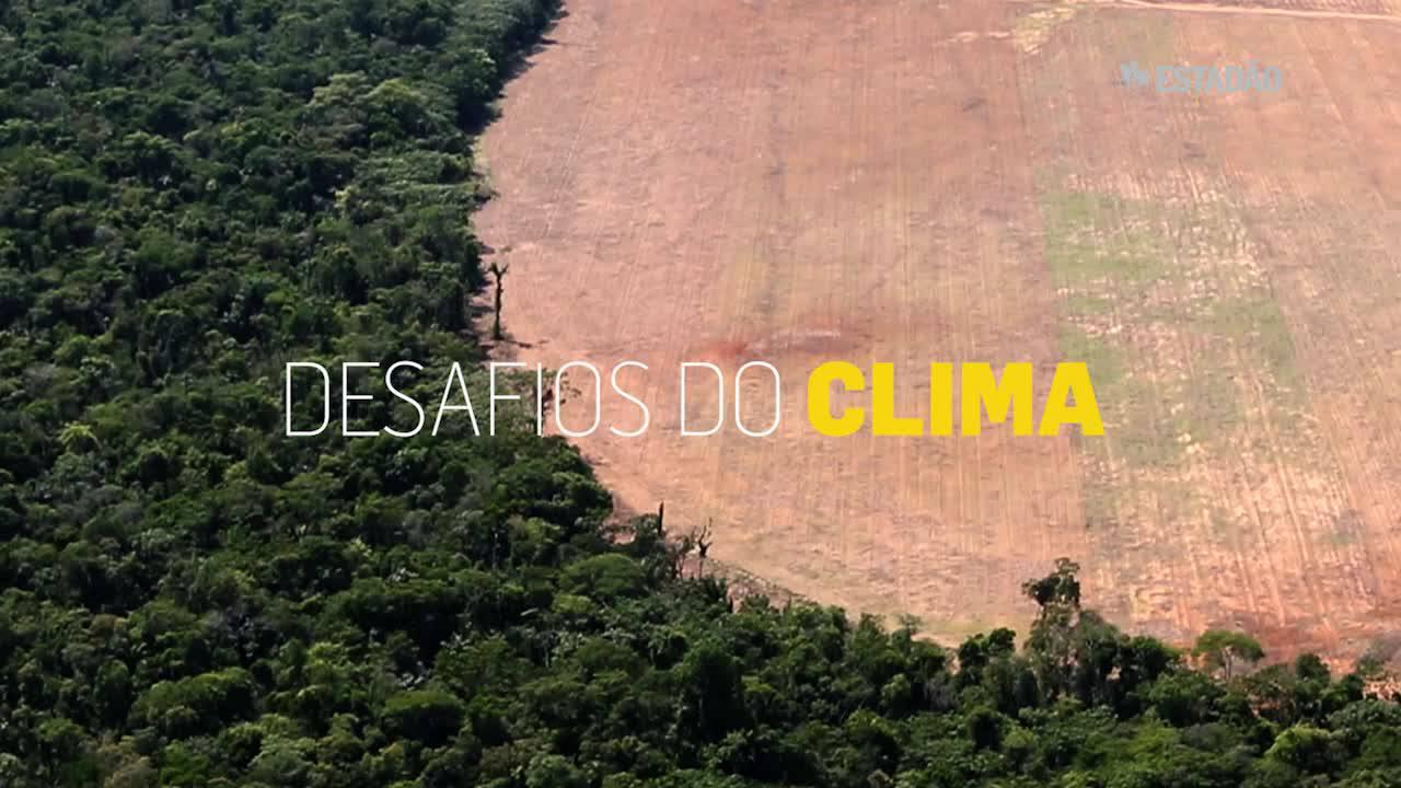 Após desmatar 40%, preservar é o desafio em Mato Grosso
