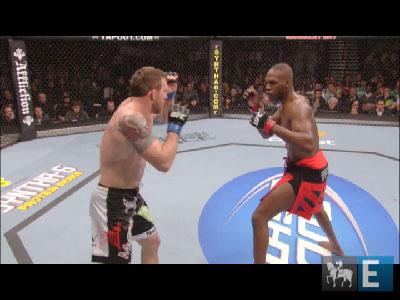 Meio-pesados se enfrentam este domingo no UFC 135
