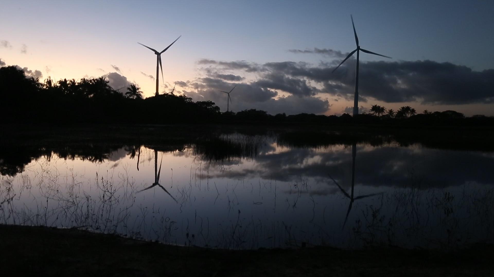 A força do vento do Nordeste