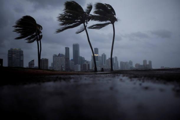 Resultado de imagem para furacão irma florida
