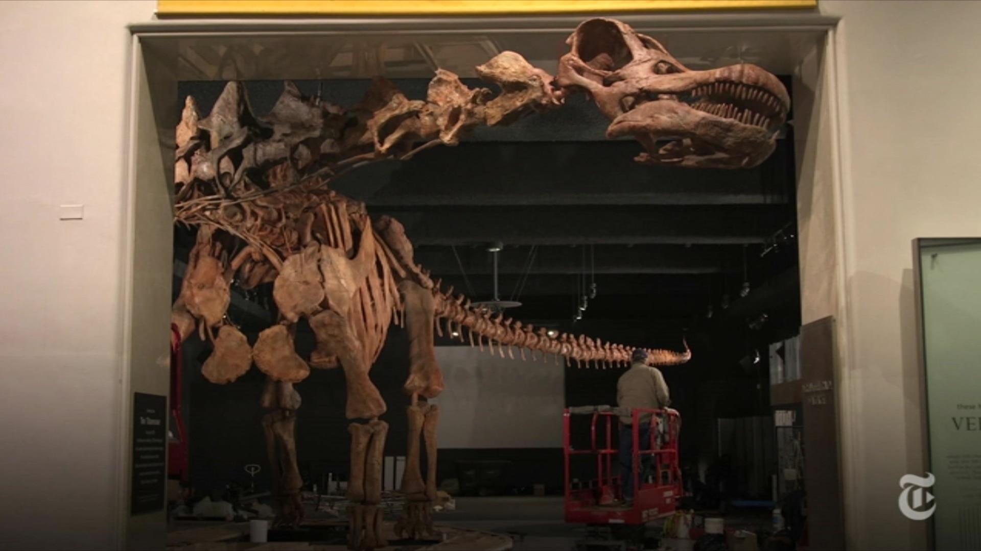 Um dinossauro ganha forma