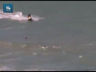 Turista paulista morre após ataque de tubarão em Recife