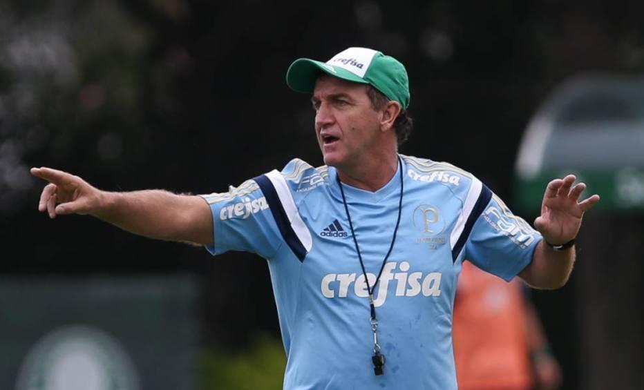 César Greco|Ag. Palmeiras
