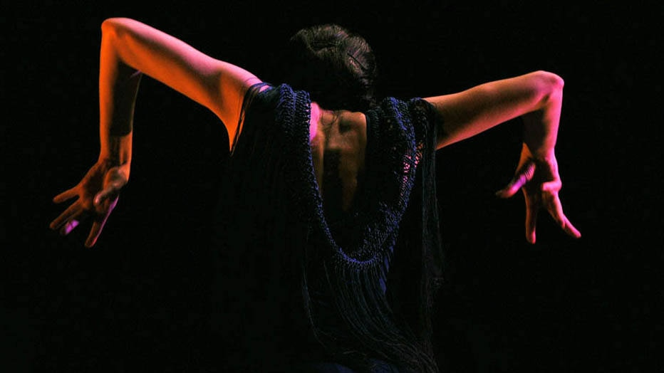 Flamenco dancer Maria Pages performs during a rehearsal at the La Maestranza theater during the Flamenco Bienal in Sevilla on September 17, 2014. The Sevilla Flamenco Bienal runs from September 12 to October 5, 2014.   AFP PHOTO / CRISTINA QUICLER