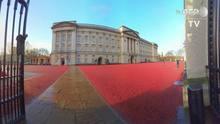 Passeio virtual no Palácio de Buckingham