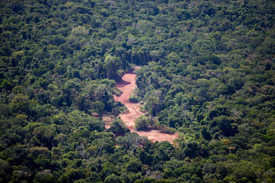 Mineração foi responsável por 9% do desmatamento da Amazônia entre 2005 e 2015