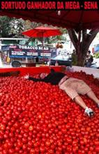 Inflação do tomate virou piada nas redes sociais em 2013