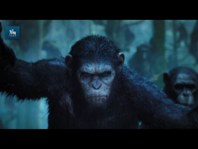 """Atores aprendem movimentos animais no novo """"Planeta dos Macacos"""""""