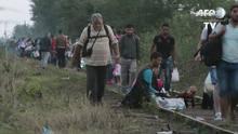 Migrantes chegam à Hungria