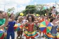 Em São Paulo, a festa de pré-carnaval foi no bloco Bicho Maluco Beleza, na Avenida Pedro Álvares Cabral.