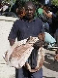 Homem ferido carrega sua filha morta nos braços pelas ruas de Porto Príncipe