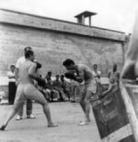 Detentos da Casa de Detenção de São Paulo lutam boxe, em 18/01/1967