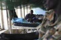 A malária é uma doença potencialmente mortal, causada por parasitas transmitidos pela picada de mosquitos infectados. Em 2013, a malária causou cerca de 584 mil mortes, sobretudo entre crianças africanas. A malária pode ser prevenida e é curável.