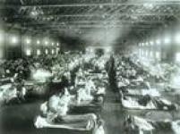 A gripe espanhola - como ficou conhecida pelo grande número de mortos na Espanha - apareceu em duas ondas diferentes durante o ano de 1918. Na primeira, em fevereiro, embora bastante contagiosa, era uma doença branda não causando mais que três dias de febre e mal-estar. Já na segunda, em agosto, tornou-se mortal.