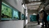 Este é o maior aquário temático de água doce do Brasil