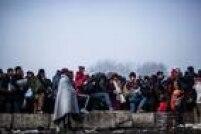 Em novembro de 2015, o governo austríaco propôs um projeto de lei para deter a entrada de refugiados, ação criticada pela Agência das Nações Unidas para os Refugiados (Acnur) pela possibilidade de aumentar o sofrimento dos imigrantes