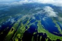 Objetivo 15 -Proteger, recuperar e promover o uso sustentável dos ecossistemas terrestres, gerir de forma sustentável as florestas, combater a desertificação, deter e reverter a degradação da terra, e estancar a perda de biodiversidade. As metas incluempromover a implementação da gestão sustentável de todos os tipos de florestas, deter o desmatamento, restaurar florestas degradadas e aumentar substancialmente o florestamento e o reflorestamento