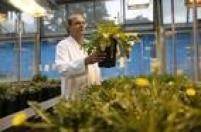 Dezoito vagasdo curso de CIÊNCIAS BIOLÓGICAS, oferecido no Instituto de Biologia da USP, serão preenchidas pelo Enem.