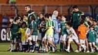 Último colocado, o Palmeiras está há nove jogos sem vencer no Brasileirão.