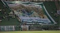 O sábado começou agitado para o Palmeiras, que ocupa a lanterna do Campeonato Brasileiro.