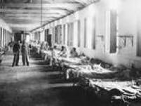 Calcula-se que a cada ano são registrados no mundo 130 mil casos de febre amarela que causam 44 mil mortes. O vírus é endêmico nas zonas tropicais da África e da América Latina, com uma população de mais de 900 milhões de habitantes.