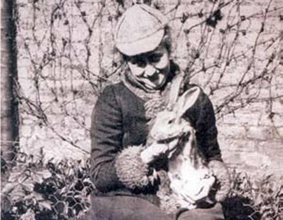 Beatrix Potter entrou em domínio público em 2014