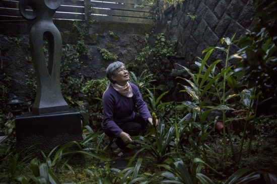 Guo Su-jen, cujo pai foi executado em 1952, cuida de seu jardim em Taipé; ela recebeu uma carta de despedida mais de 60 anos depois
