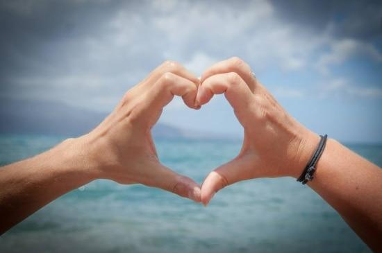 Psicólogos, biólogos, economistas e antropólogos estão investigando o papel do amor em nossas vidas e em nossa cultura