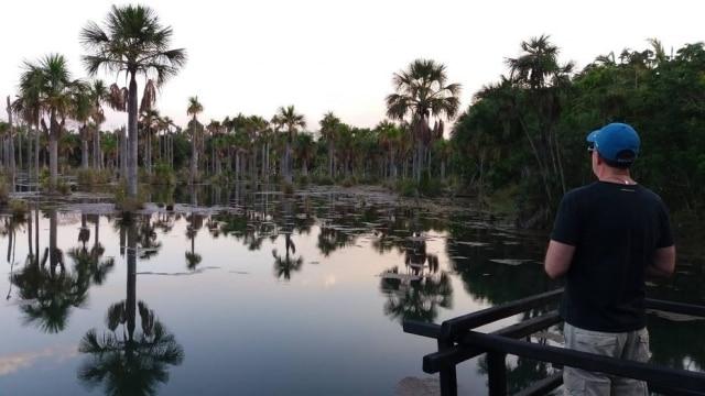 Lagoa das Araras, em Nobres: aves se refugiam ali no fim de tarde