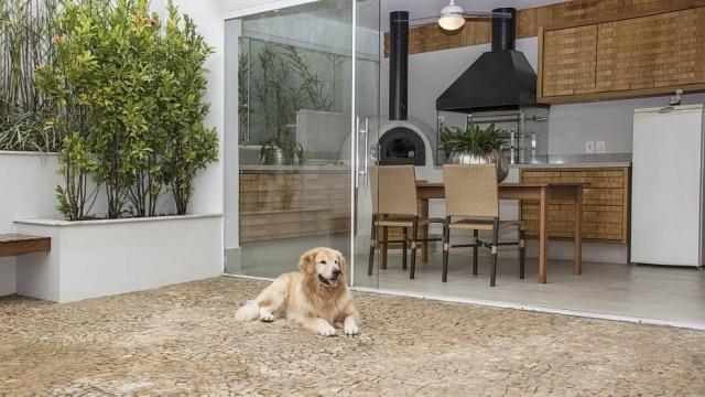 O piso de mosaico português permite maior atrito com as patas do cachorro, evitando quedas e lesões