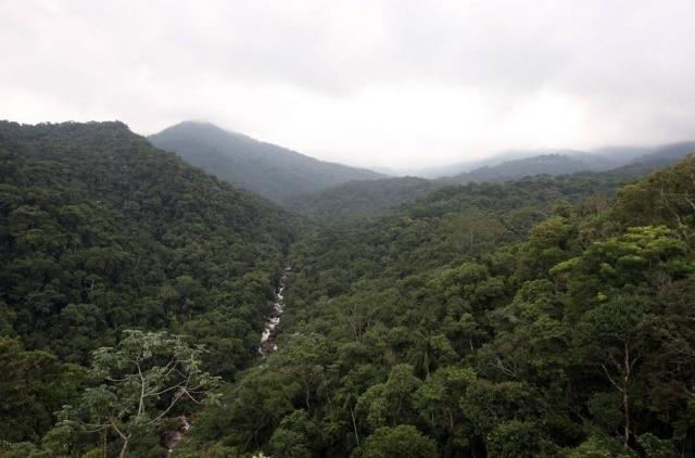 Resende é ponto de partida para passeios ao Parque Nacional de Itatiaia