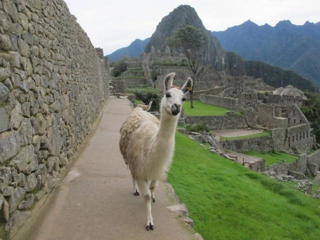 Aulas de espanhol em Cuzco para ficar pertinho de Machu Picchu
